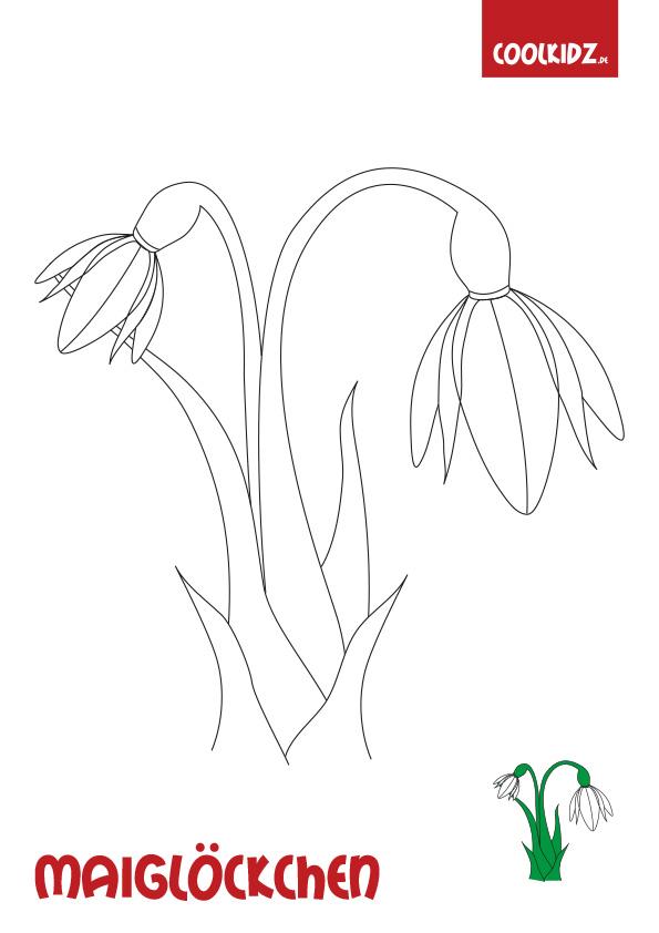 Malvorlagen Frühlingsblume Ausmalbild Frühlingsblumen Für Kinder Bei
