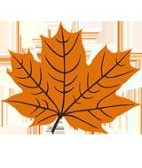 Malvorlage Ahornblatt Fensterbilder Herbst Malvorlage Herbstblatt